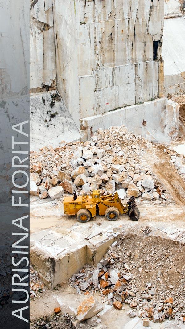 Aurisina Fiorita quarry marble